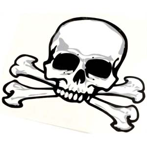 Fearsome silver, black & white temporary tattoo. Great for party bags 6 * 5.5cm.