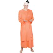 Spiritual Guy Costume, includes robe with drape and latex headpiece with hair.