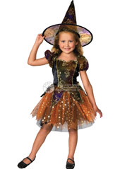 Elegant Witch Costume, includes dress and hat.