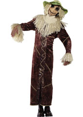 Rebel Toons Scarecrow Costume, includes robe, hat with attached straw hair and mask.