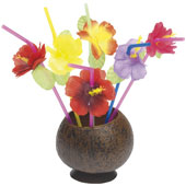 Hawaiian Straws.  Assorted Colours with flowers.