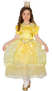 Story Princess Costume includes dress only