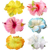 Hibiscus Flower Hair Clip.  Available in an assortment of colours.