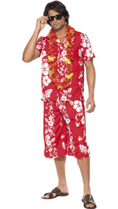 Hawaiian Hunk Costume, includes shirt and shorts.